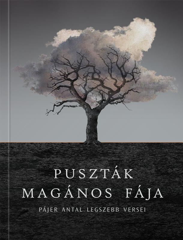 b-book-cover-01